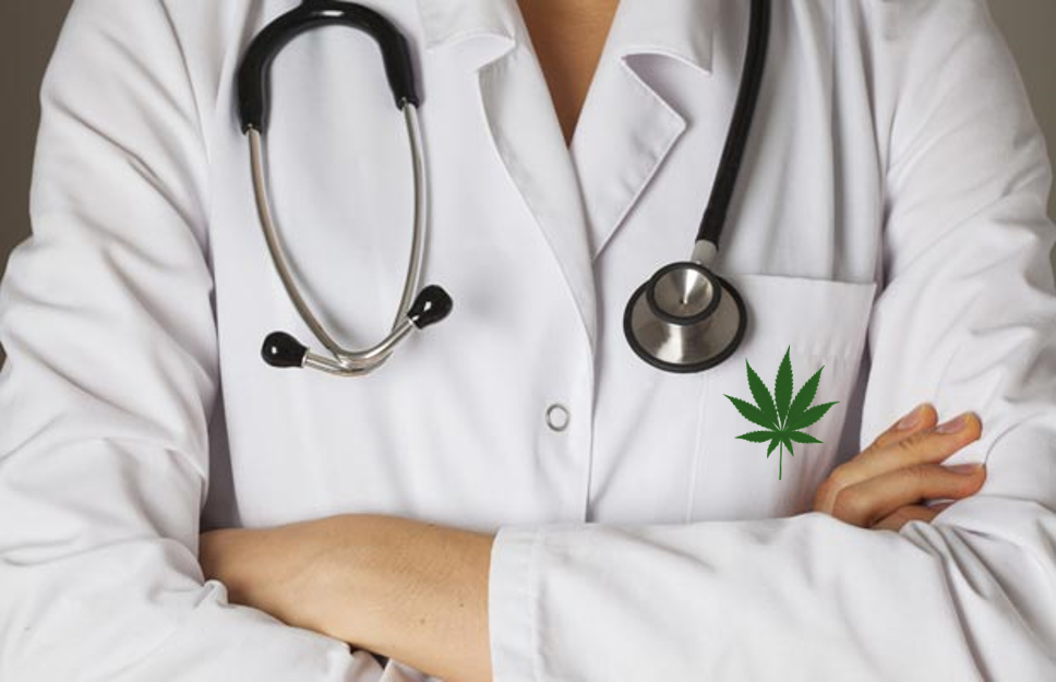 All your questions, answered: 8 things to know about the medical cannabis industry [AMA with Dr. Morris Laster]