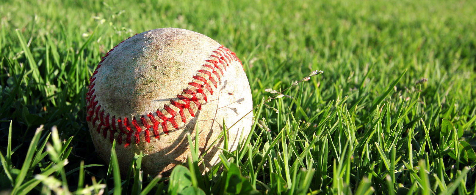 What Babe Ruth could teach about maximizing returns on your startup investments